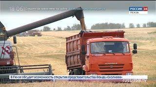 Пензенские хлеборобы собрали 1 млн. тонн зерна