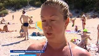 Сотрудники ГИМС и казаки Балтийского округа проинспектировали пляж в посёлке Сокольники
