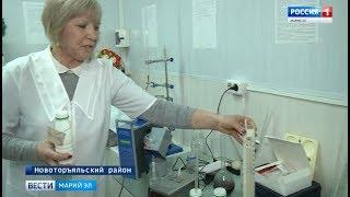 Новоторъяльский колхоз сделал ставку на качество молока