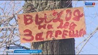 Второй день рождения. Ставропольцы спасли тонущих школьников