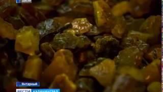 Объём добычи Калининградского янтарного комбината вырос почти в полтора раза