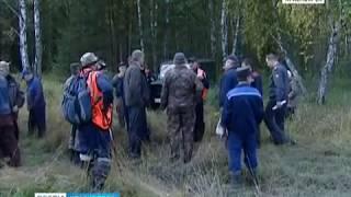 Красноярцам напомнили правила безопасности при походах в лес