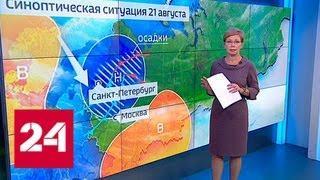 """""""Погода 24"""": Сильный ливень с грозой обрушился на Москву - Россия 24"""