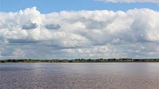 Количество вредных веществ в югорских реках сократилось в 150 раз