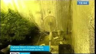 Коноплю выращивал в своём гараже житель Ангарска