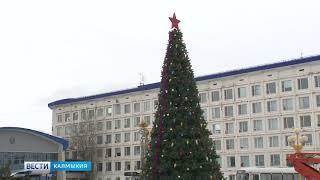 На главной площади Элисты сегодня установили новогоднюю ёлку