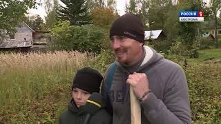 В Костроме заволжане заложили первую кедровую аллею