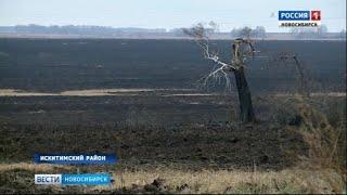 Пожар едва не уничтожил деревню под Новосибирском