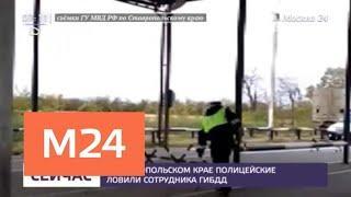 Сотрудник ГИБДД на Ставрополье сбил человека и скрылся с места ДТП - Москва 24