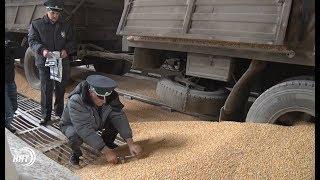 Махачкалинский порт готов увеличить перевалку грузов вИран