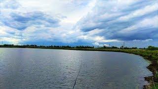 В Югре будет больше рыбоводных участков