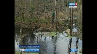 Вести Санкт-Петербург. Выпуск 14:25 от 6.11.2018