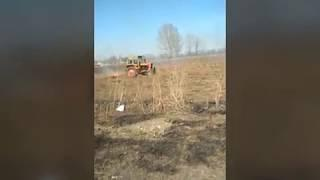 Трактор жжет траву