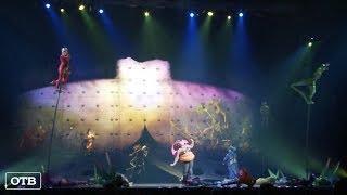 OVO: Cirque du Soleil показал в Екатеринбурге шоу о жизни насекомых