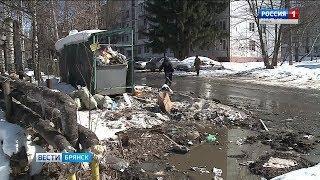 Брянцы пытаются заставить коммунальщиков вывозить мусор
