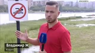Депутаты Заксобрания проверили городские пляжи