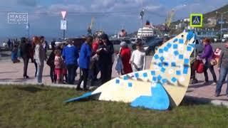 Фестиваля «Море жизни» пройдет в Петропавловске | Новости сегодня | Происшествия | Масс Медиа