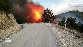 В Гумбетовском районе горит лес