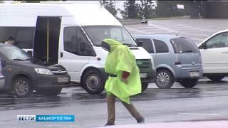 Заморозки в Башкирии продолжатся