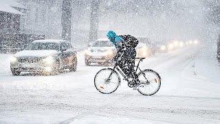 Февральские сюрпризы: за теплом - в Арктику