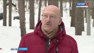 Археологическая экспедиция исследует места массовых расстрелов в Карелии