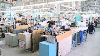 В Волгоградской области выросло число трудоустроенных инвалидов