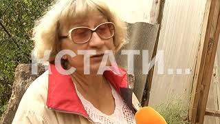 """""""Пирамиду здоровья"""" на своем участке построила жительница Городецкого района"""